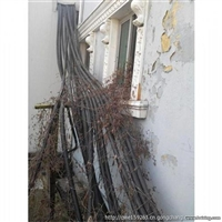 昆山二手电缆回收 昆山旧电缆回收一米价格
