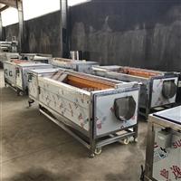 牡蛎专用清洗机,清洗量大,清洗速度可调