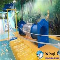 儿童水上乐园投资费用 安徽贵州浙江 星力儿童水上乐园加盟厂家
