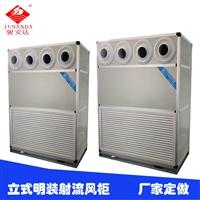 立式明装风柜G-12LA六排管变频变速冷水风柜厂家