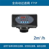 潤新全自動過濾閥 F71P