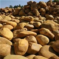 浙江出售黄蜡石 江西黄蜡石园林石