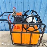 果树杀虫喷雾器 手推式四轮汽油打药机 电动室内消毒机打药机