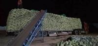 湘西州陶粒生产厂家  保温材料 卫生间回填陶粒