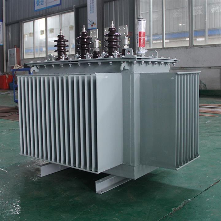 100KVA油浸式电力变压器 10KV变压器 欢迎致电