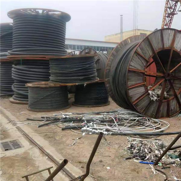 回收电缆线 回收电缆公司 快速获取价格