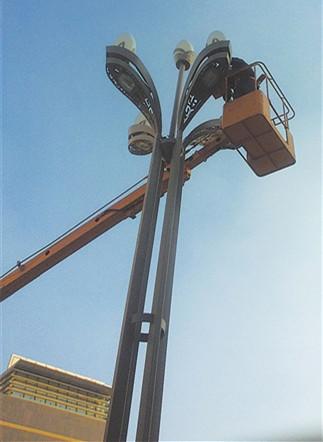 成都15米5火景观灯 巴中15米5火玉兰灯 点击咨询