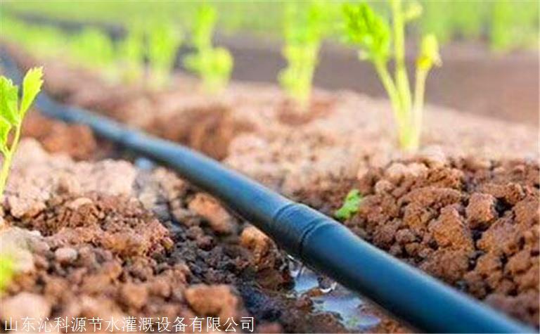 深圳葡萄滴灌管