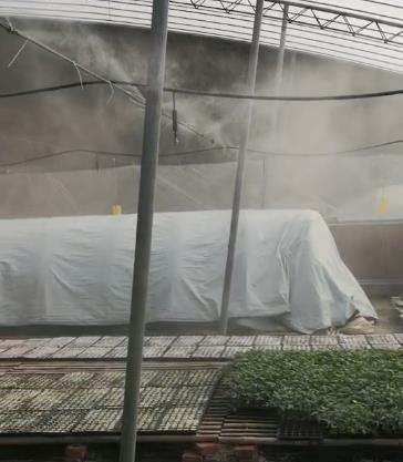 小型喷雾设备型号 除尘喷雾加湿设备规格