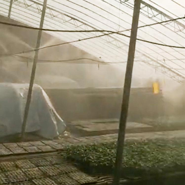 温室喷雾设备型号 自动大棚喷雾设备公司