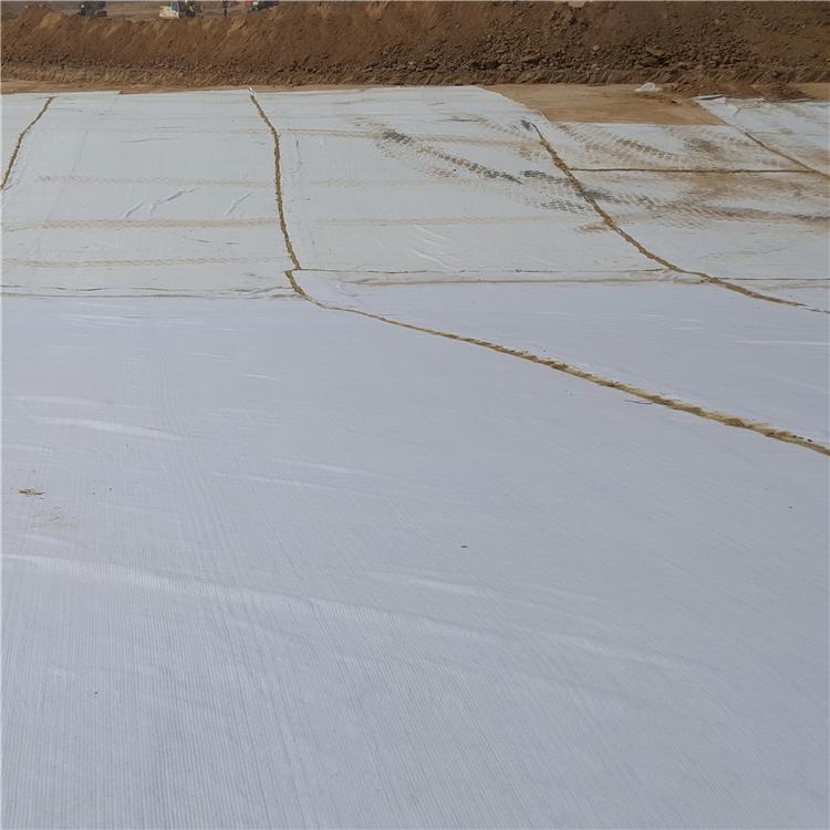 人工钠基膨润土防水毯 膨润土防水垫