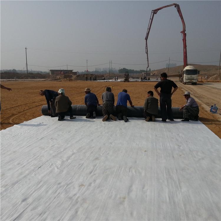粉末型膨润土防水毯 钠基膨润土防水垫