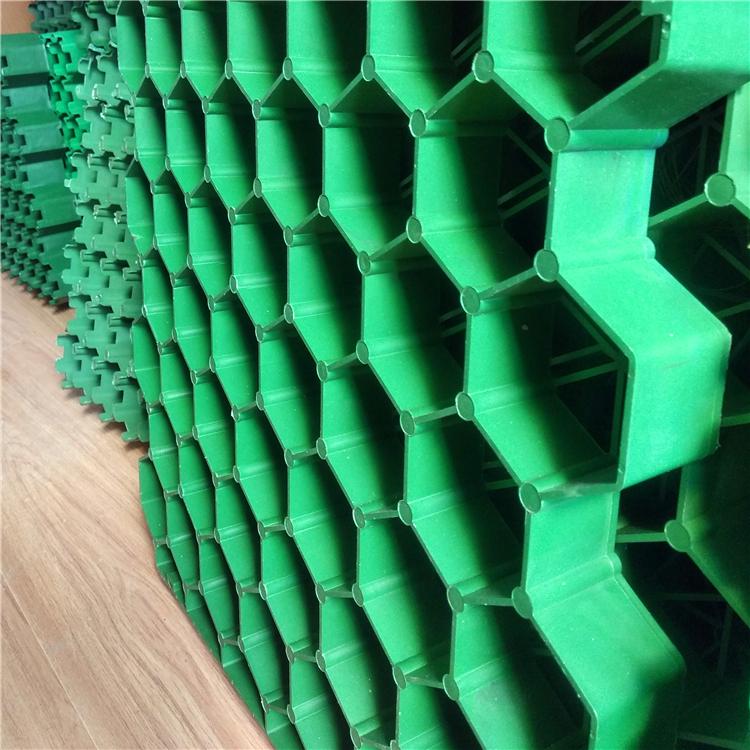 河道护堤绿化植草格 郑州塑料植草格