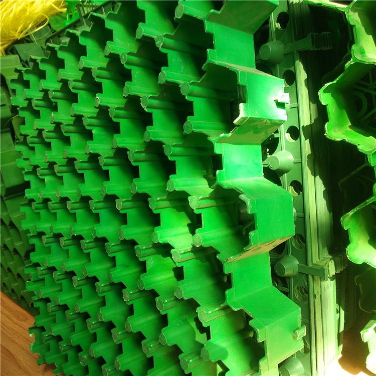 7公分平口植草格 河北塑料植草格
