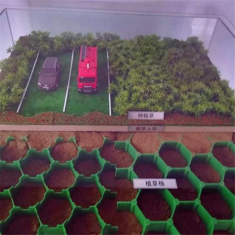 河道护堤绿化植草格 河北塑料植草格