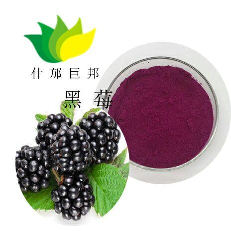 刺蒺藜提取物 优质的刺蒺藜提取物 稳定的产品货源