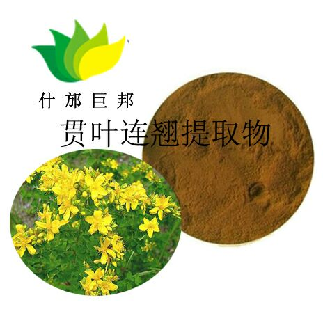 黄芪提取物 质量好的黄芪多糖厂家 供货及时