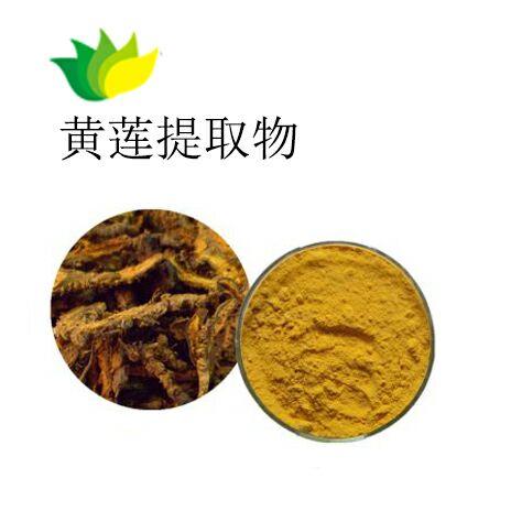 生姜提取物 精粹提取物批发 稳定的产品货源