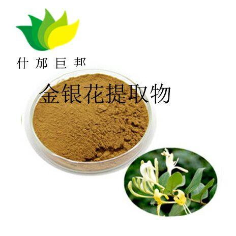 酸枣仁提取物 精粹酸枣仁提取物 产品性价比高