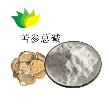 酸枣仁提取物 质量好的植物提取物 供货及时