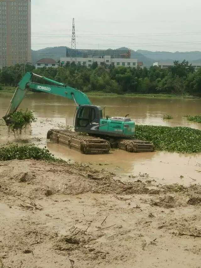 水陆挖机租 沼泽地挖掘机 湿地挖机出租