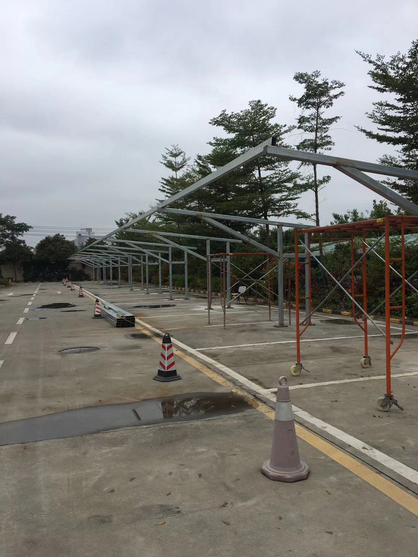 道滘镇阳光棚-大型的阳光棚