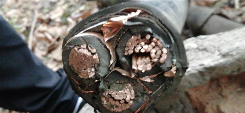 二手西安电缆回收