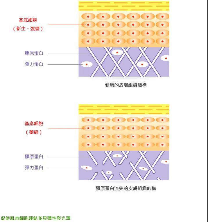 光子嫩肤ManBetX万博下载排行 光子焕肤仪费用