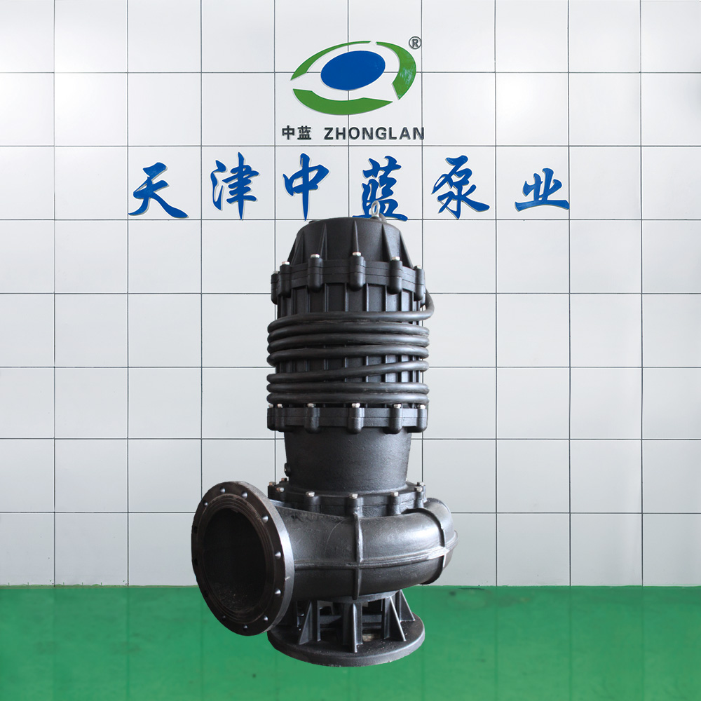 45KW污水泵 河水提升泵站