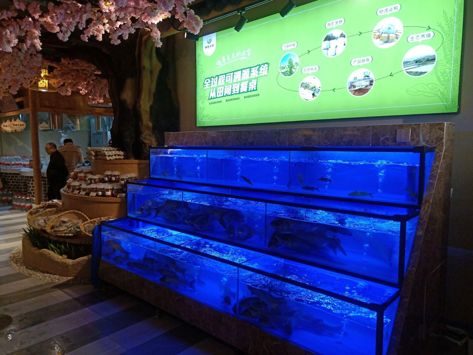 海鲜鱼缸设计制作 郴州饭店暂养鱼缸哪家好