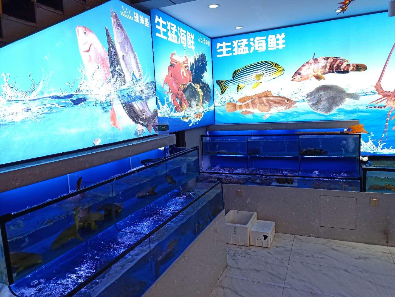 简易鱼缸 永州海鲜鱼缸商家