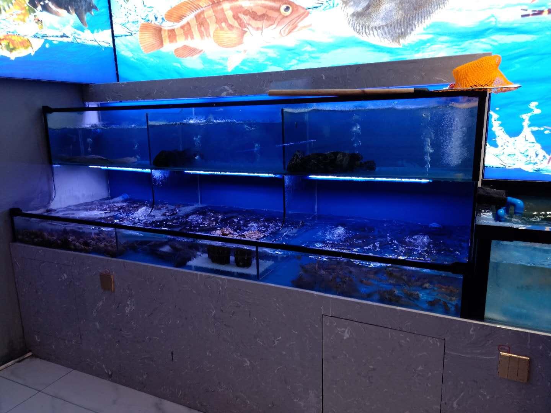 海鲜鱼缸设计制作 湖南简易鱼缸电话