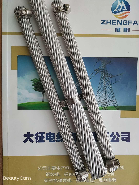 生產鋼芯鋁絞線廠家 JL/G1A240/30鋼芯鋁絞線現貨
