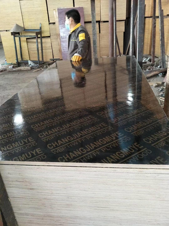 清水模板 天津木覆膜板批发