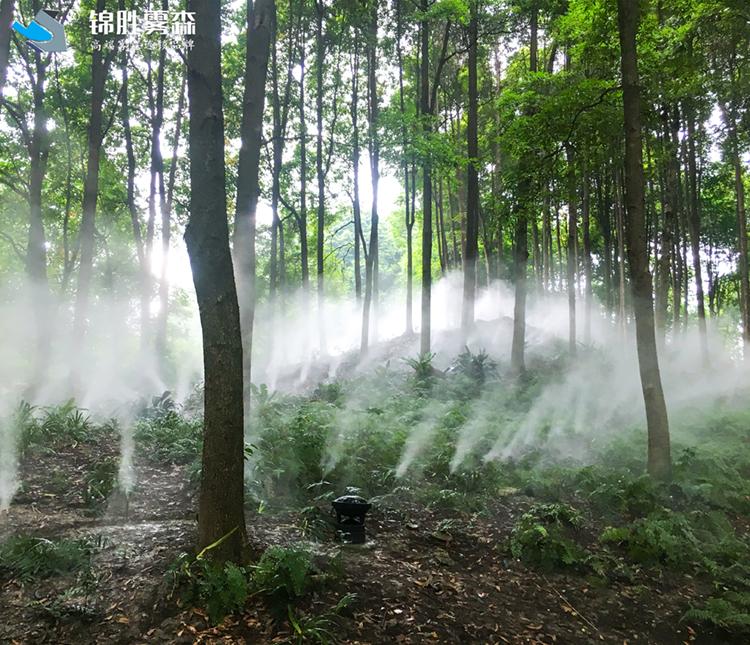 菜品加湿保鲜 张掖高压水雾加湿设备
