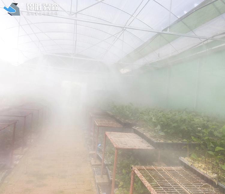加油站水雾加湿 武威菜品加湿保鲜