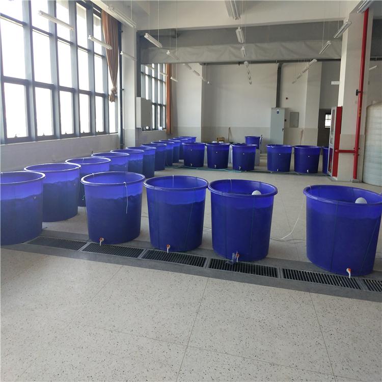 塑料酿造桶 养鱼塑料大桶耐用养殖家用带盖塑料圆桶