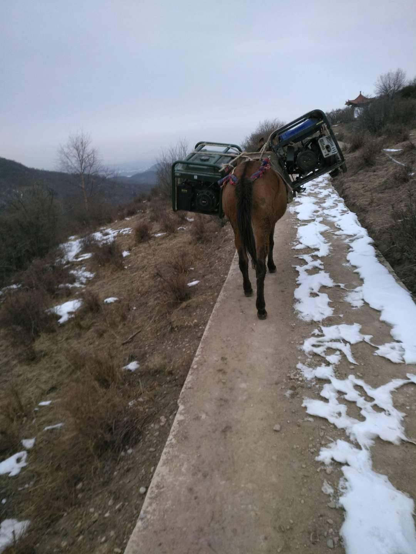 砂石料骡马运输 江西塔基建设材料马队运输怎么联系