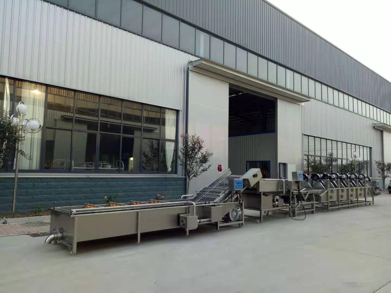 新式烤地瓜加工設備 廣西新式烤紅薯加工流水線供貨商