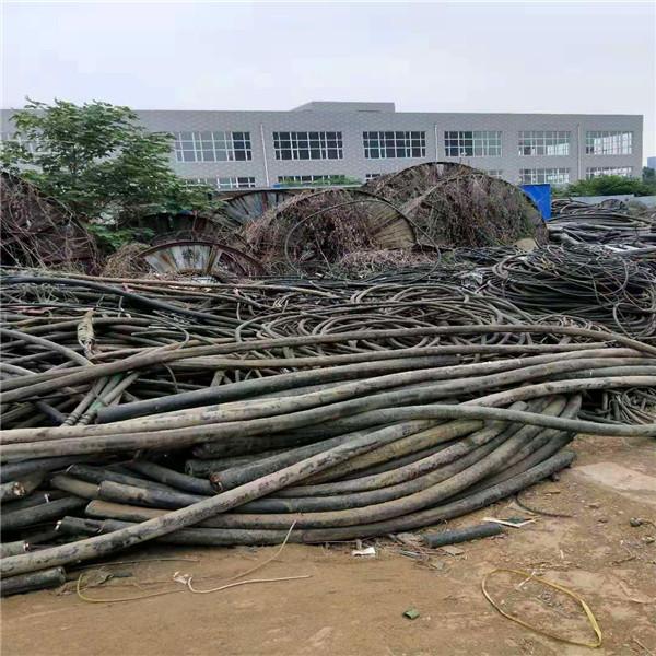 东莞回收电力电缆