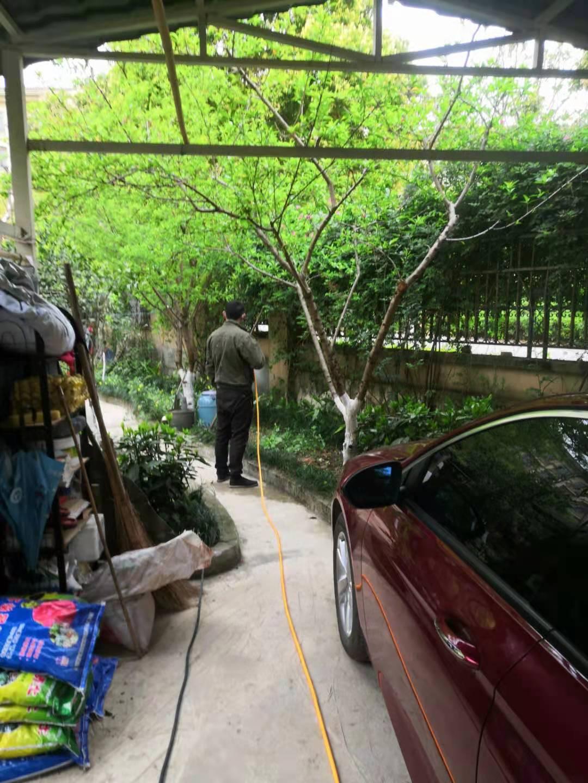 珙县农家乐灭蟑螂价格