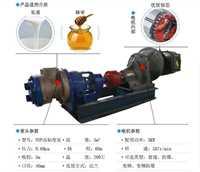 滄州市好用的轉子泵系列