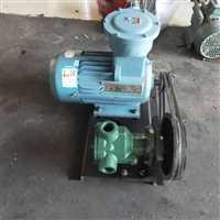 滄州市技術好的小型轉子泵公司電話