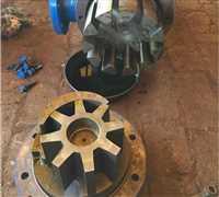 滄州市技術好的轉子泵報價單